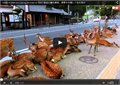 להקה גדולה של צבי חוסמים את הכביש ביפן