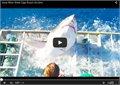 ניצל ממלתעות של כריש לבן