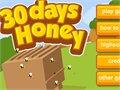 30 יום דבש
